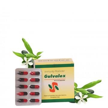 Yamuna Pharmacy Gulvelex 10...