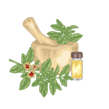 Dabur Honitus Jar(L) 100 Tab